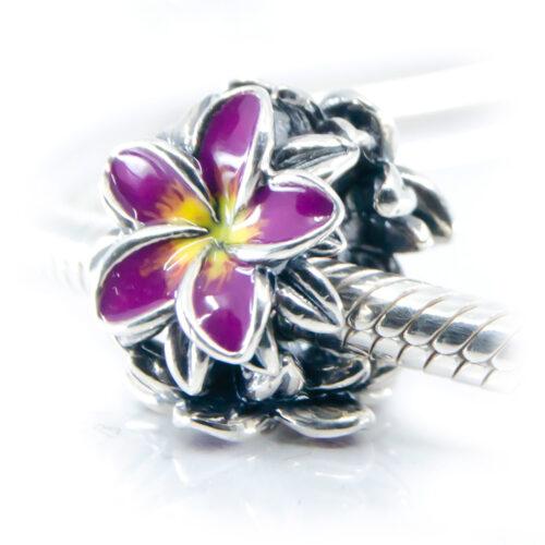 purple frangipani flower charm